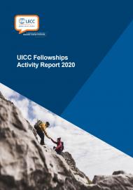 Fellowships activity report