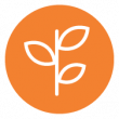 UICC_CapacityBuilding_Solid_Icon_Orange.png