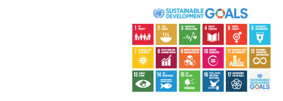 150924_SDGs_adopted_coverimage.png