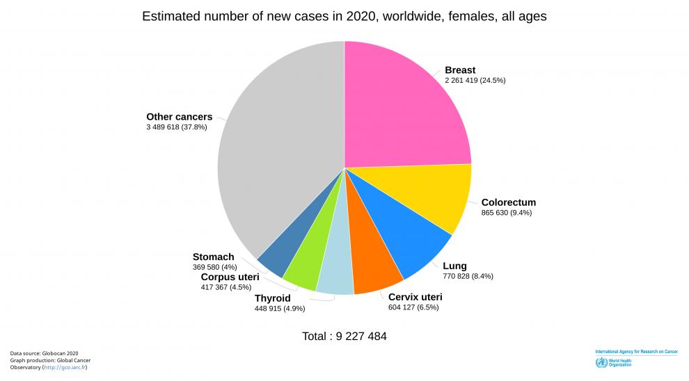 Women's cancer 2020