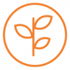 UICC_CapacityBuilding_Outlined_Icon_Orange.png