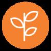 UICC_CapacityBuilding_Solid_Icon_Orange.png
