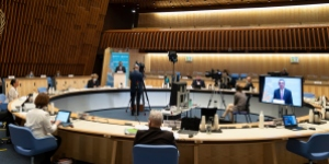 Virtual meeting of the 74th World Health Assembly