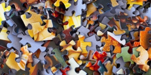 Puzzle/jigsaw pieces